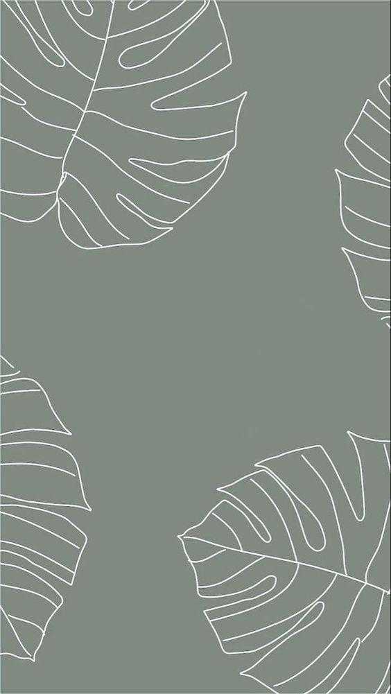 •Wallpaper Aesthetic•