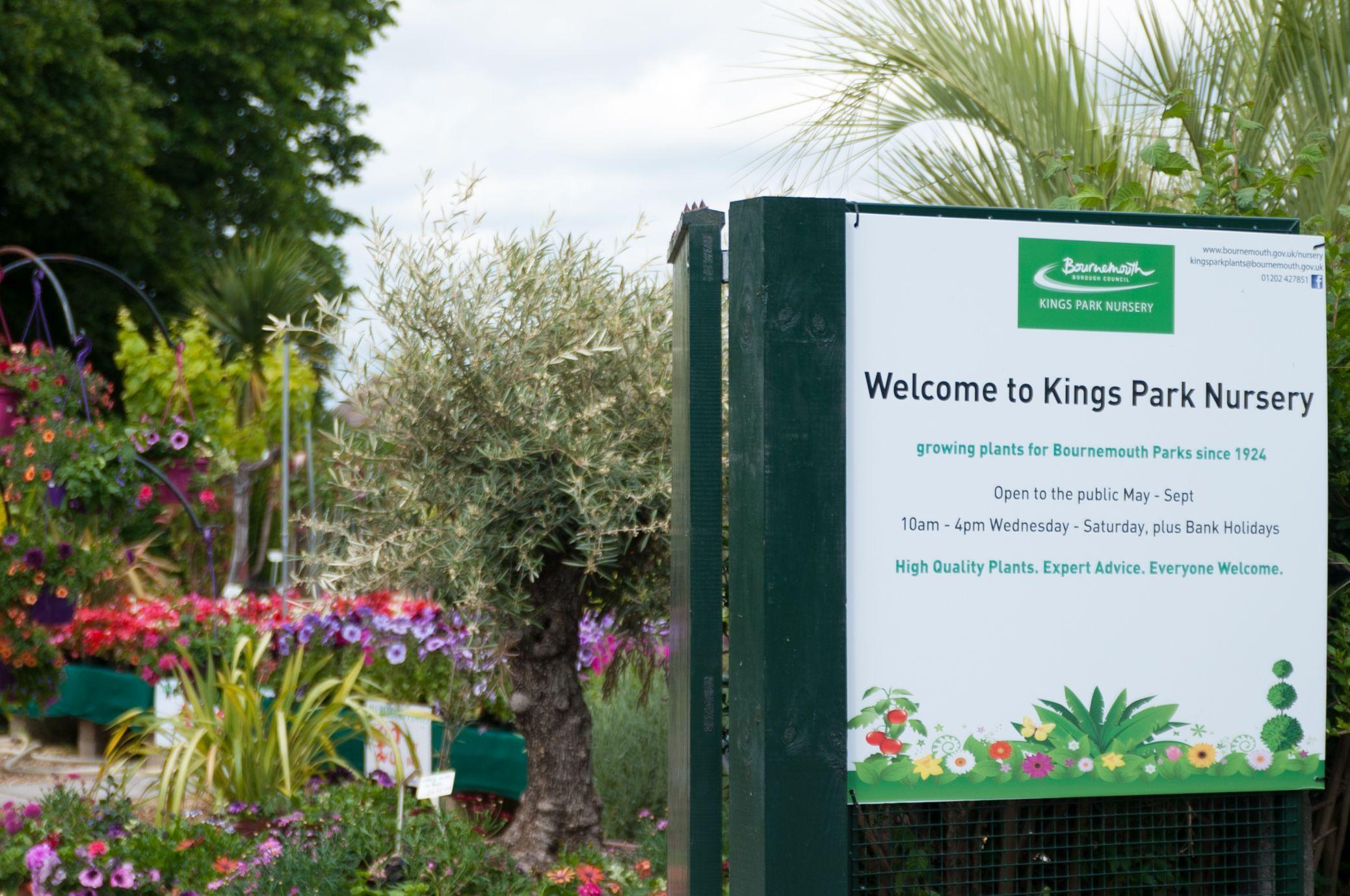 King S Park Nursery Bournemouth S Award Winning Plant Nursery Is