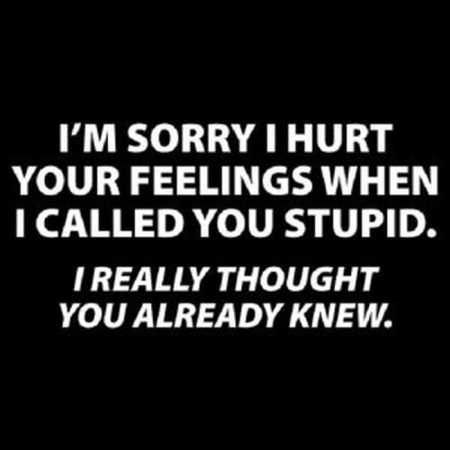 Photo of 36 Funny Quotes Sarcasm