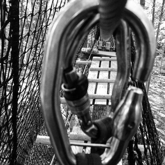 Climb the treas