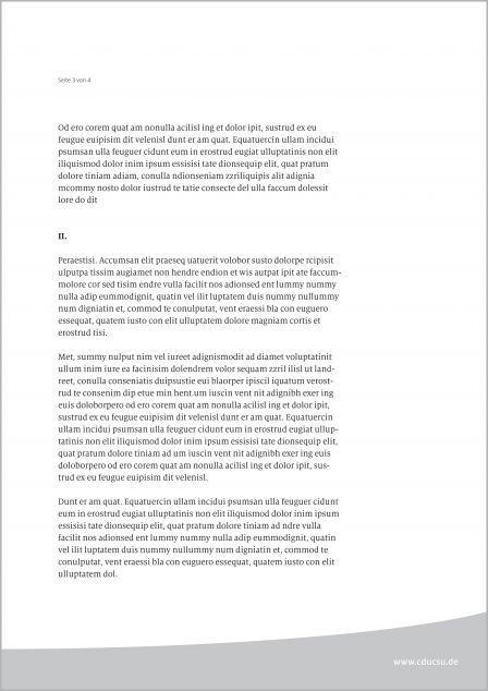 Cdu Csu Corporate Design Geschäftsausstattung