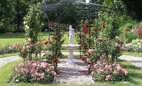 Rosen pflanzen - mettre du gravier dans son jardin