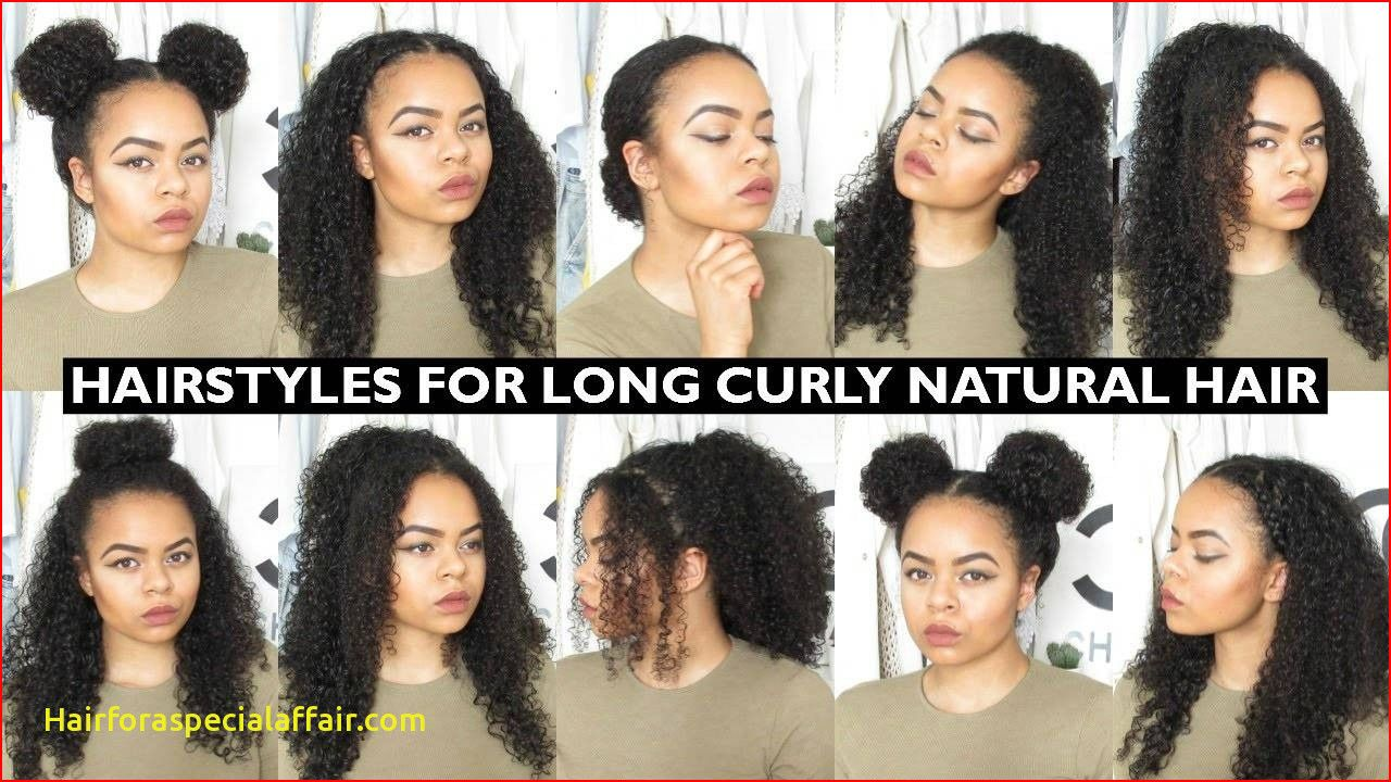 7 Easy Everyday Hairstyles For Long Natural Curly Hair Youtube Hairstyle Curly Hair Styles Naturally Easy Everyday Hairstyles Curly Hair Styles