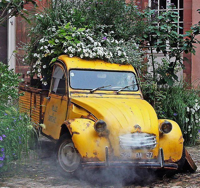 Yellow Truck Flower Garden------pinned By Annacabella