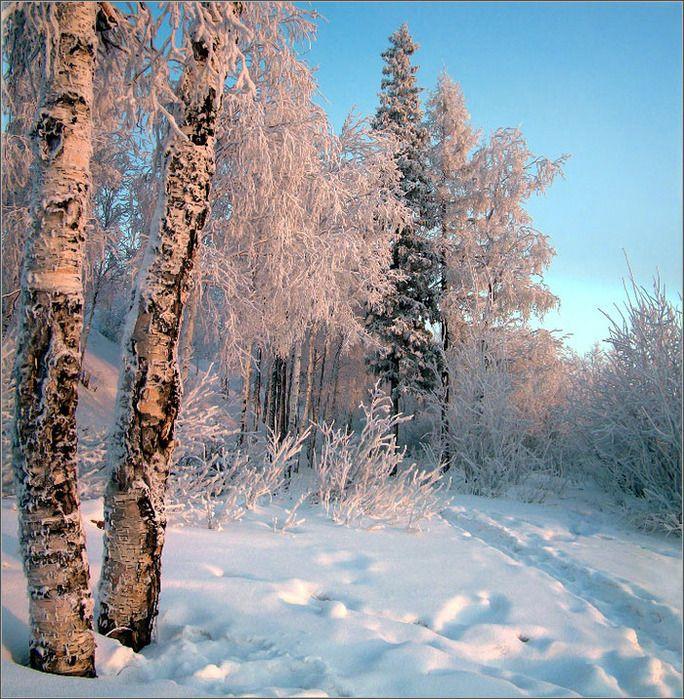 Фото байкала зимой красиво разница претерпевает