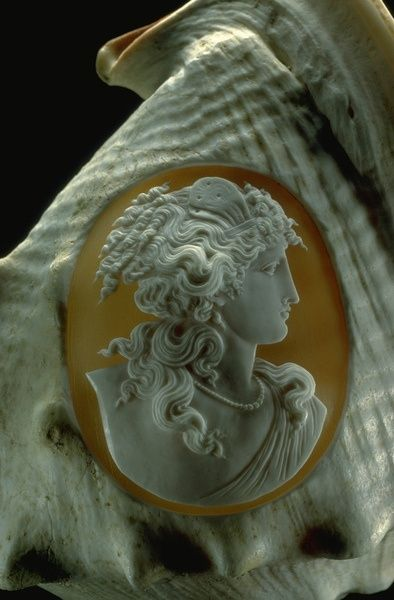 """coisasdetere: """"  Close-up photograph of a cameo carved into a conch shell (G1752) from the National Gem Collection. Photo by Chip Clark. """""""