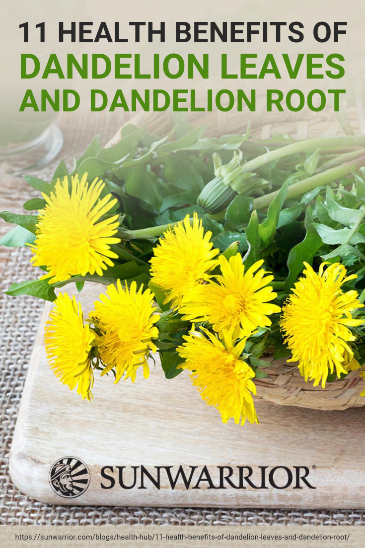 12 Health Benefits Of Dandelion Leaves And Dandelion Root Infographic Dandelion Benefits Dandelion Leaves Dandelion Health Benefits