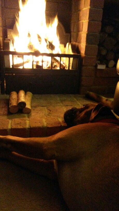 By the fire on a cold night