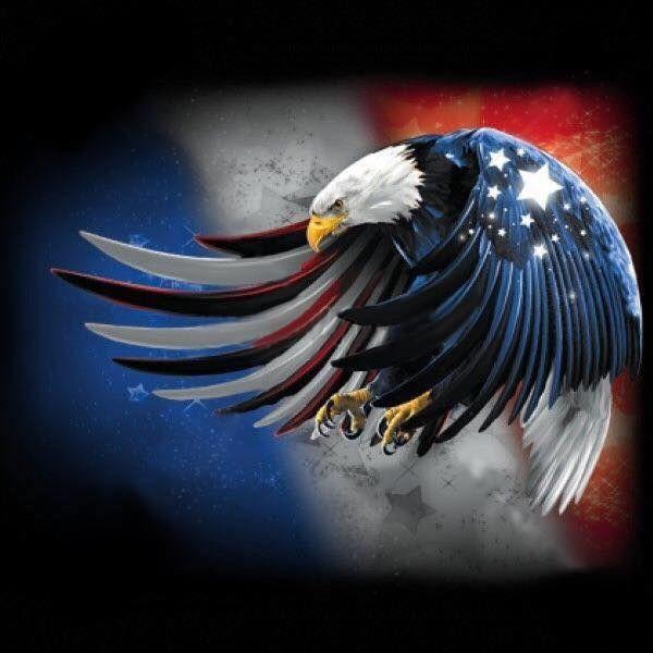 Red White Blue Eagles Pinterest Flag Eagles And Bald Eagle