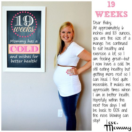 19 weeks pregnant - Pregnancy chalkboard bump progress - Pregnancy  Chalkboard Tracker - #pregnancy #baby #secondpregnancy #chalkboard #bump  #update #fitmom ...
