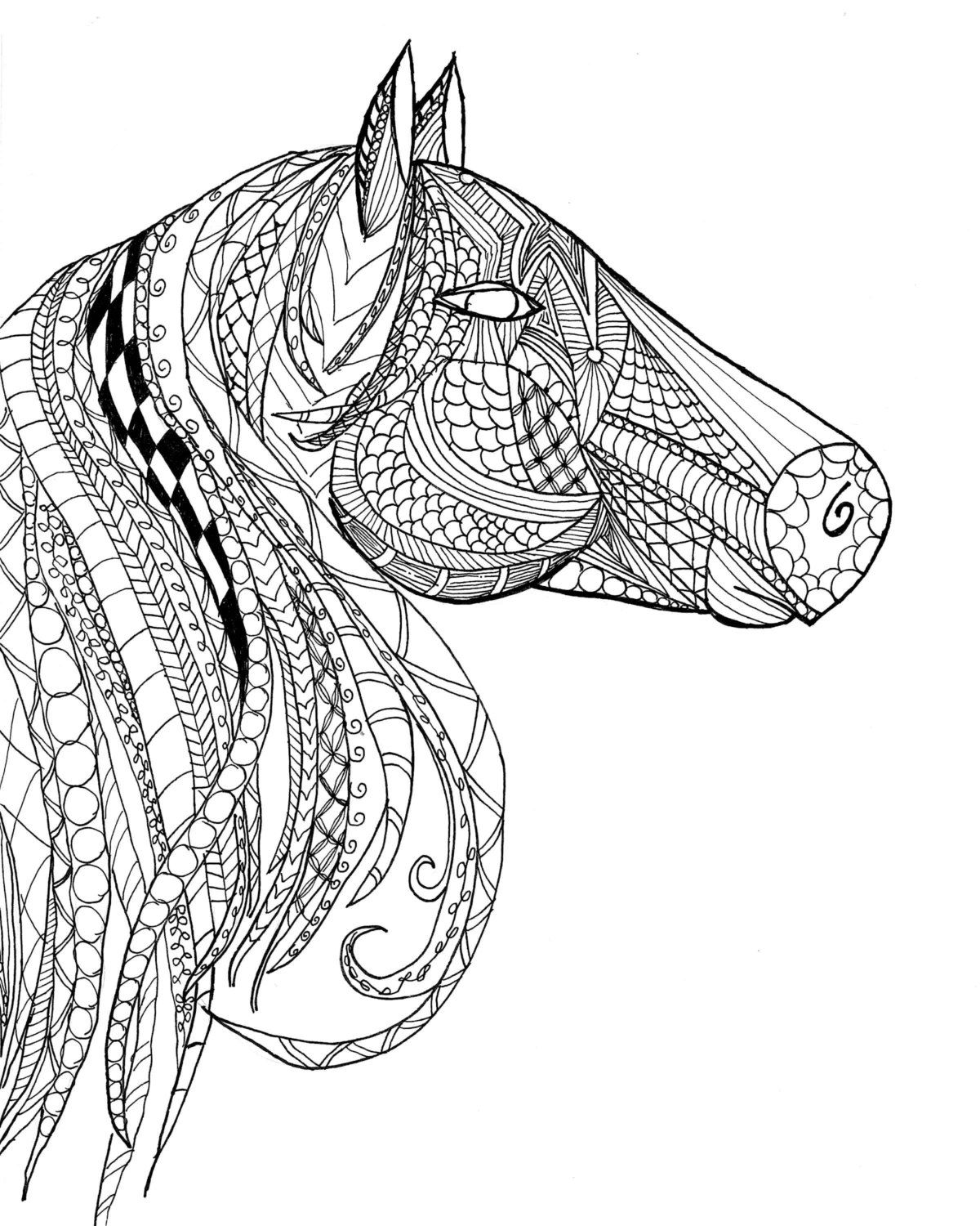 Horse Head Zentangle Adult Coloring Page by JaeRichardsDesigns on ...