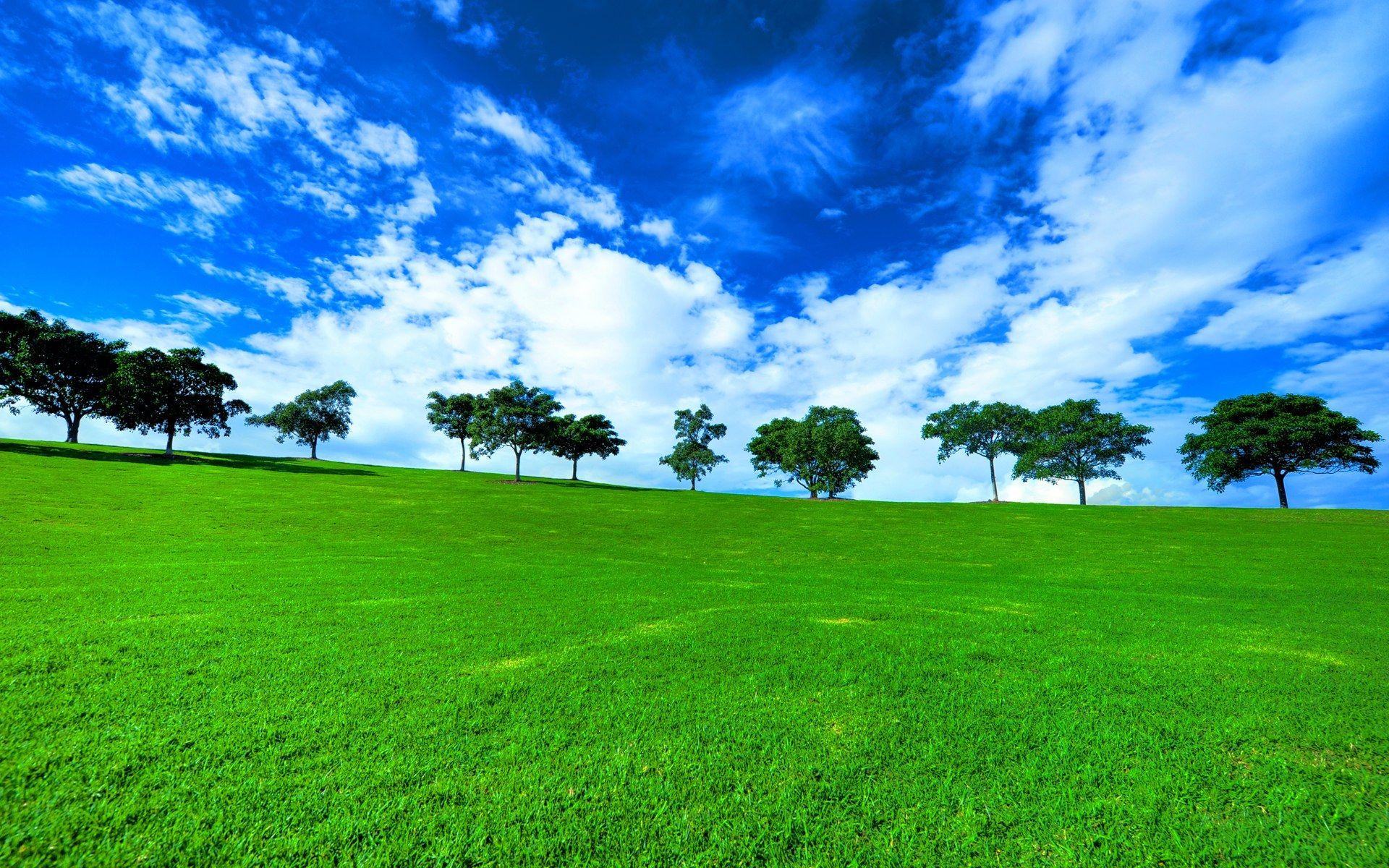 Australian Landscape Pictures Free Desktop Backgrounds With Australia Background Landscape Photo Field Wallpaper Green Landscape Landscape Wallpaper