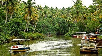 Kerala Beautiful Poovar Estuary Island Nature Wallpaper Wildlife Watching Large Scale Wallpaper Beautiful Nature