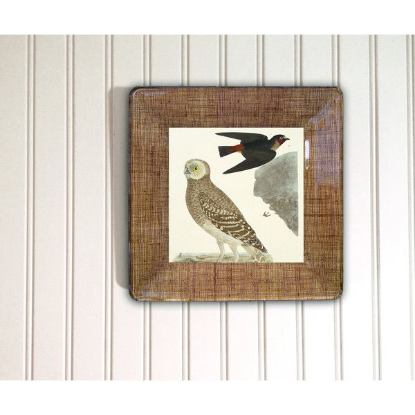 Owl decoupage plate from vintage print rustic woodland wall hanging... ($95) ❤ liked on Polyvore featuring home, home decor and wall art