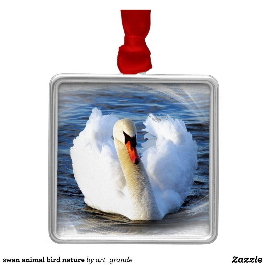 swan animal bird nature metal ornament