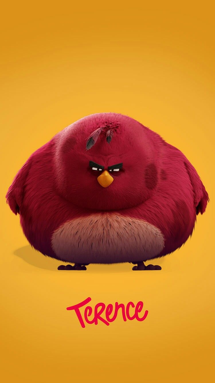 Angry Birds Image By My Info On Funny Red Angry Bird Angry
