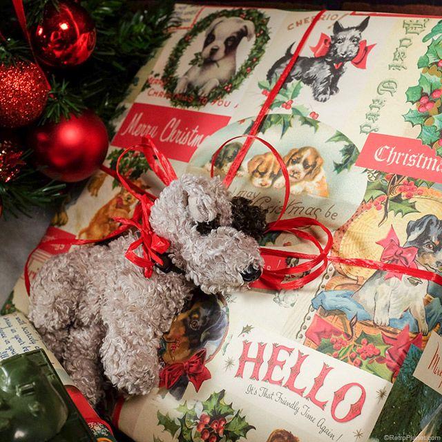 Dog christmas gift wrap