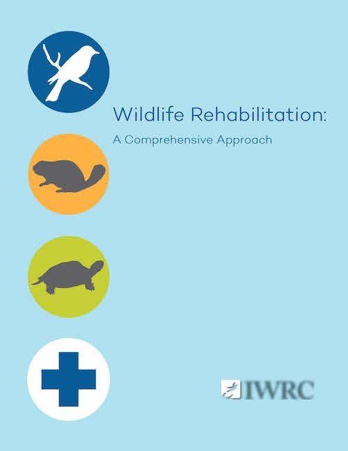 Wildlife Rehabilitation A Comprehensive Approach Wildlife Rehabilitation Wildlife