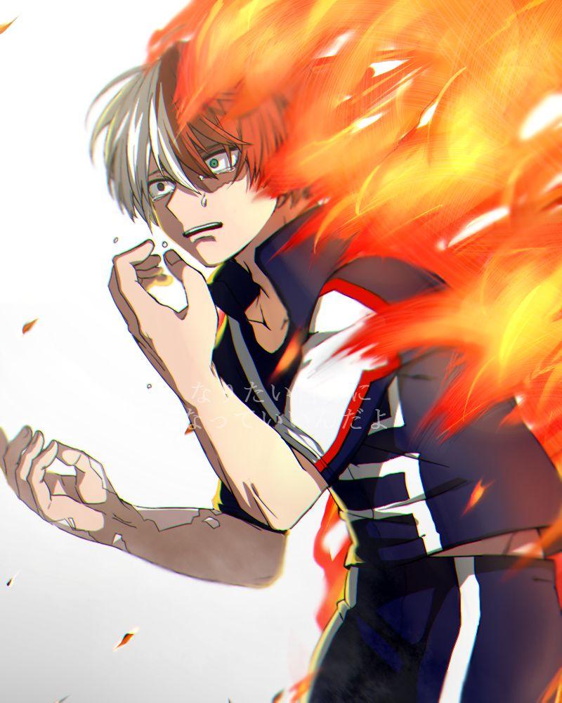 Todoroki Shouto Myhero academia, Anime