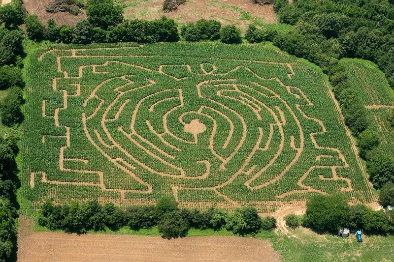 19 Pumpkin Patches In Central Arkansas To Visit This Fall Pumpkin Patch Pumpkin Patch Corn Maze Pick Your Own Pumpkins