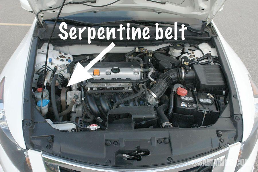 13 Serpentine Belt Ideas Serpentine Belt Seafood Dishes