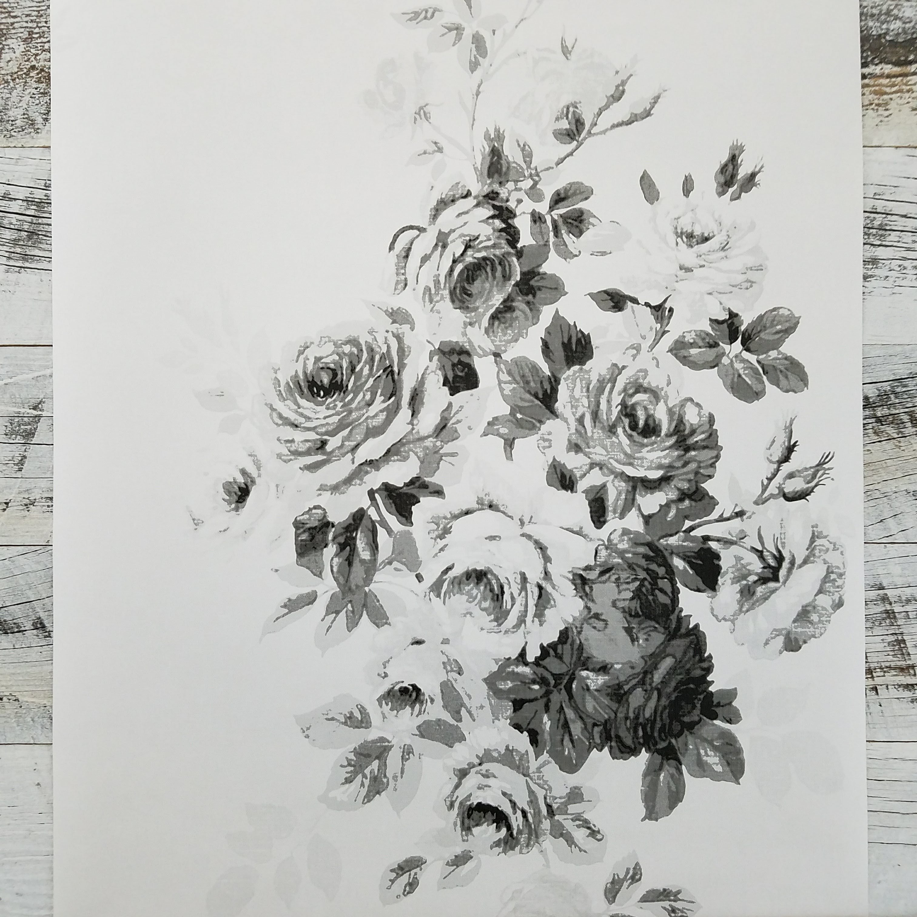 Magnolia Home Tea Rose White and Black Floral Wallpaper