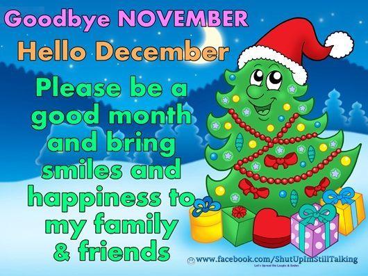 Goodbye November Hello December Please Bring Happiness December