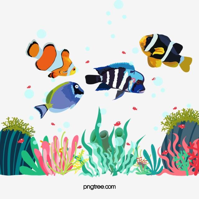Fish Fish Clipart Aquarium Png Transparent Clipart Image And Psd File For Free Download Tekne