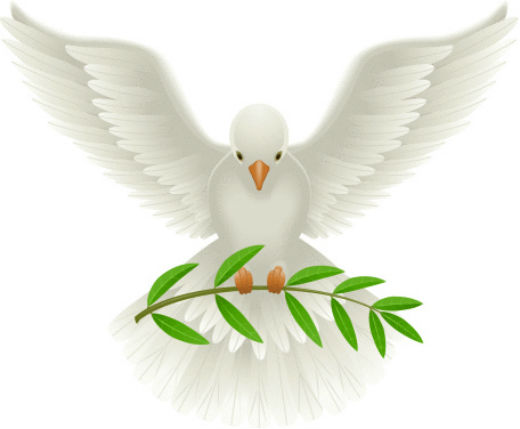 Dove Google Search Dove With Olive Branch Earth Illustration Olive Branch