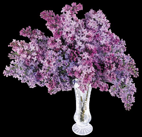 transparent vase with lilac png picture violetas y lilas. Black Bedroom Furniture Sets. Home Design Ideas