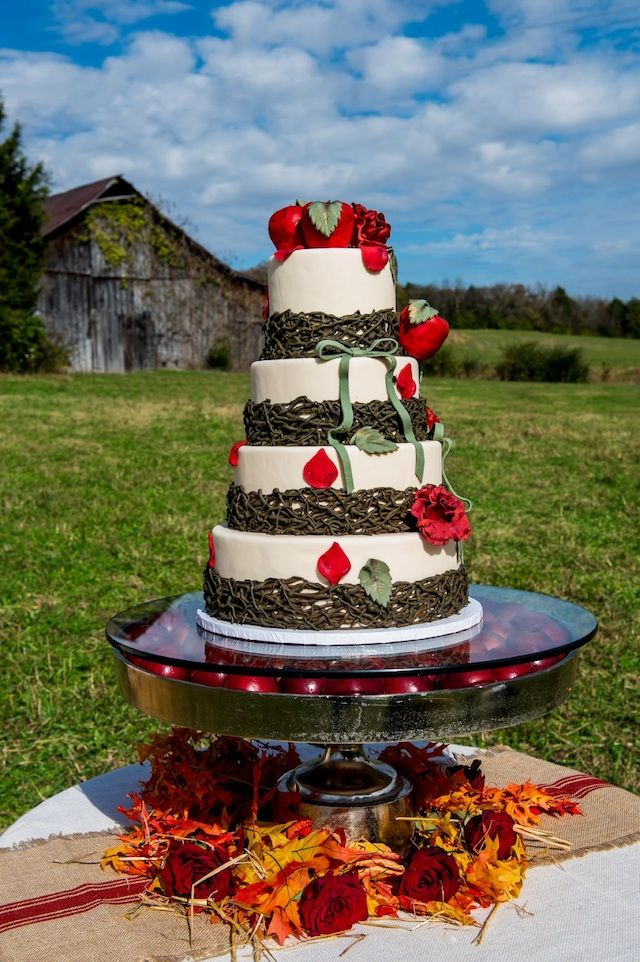 farm country wedding, red, apples, apple fall cake nashville, farm country wedding, red, apples, florals by enchanted florist in nashville, ace photography, drake wood farm, #nashville #wedding, #fall, #candyapples, food by @Harpreet Singh Dent's Market of nashville, red wedding, orange wedding, signature cake by vicki