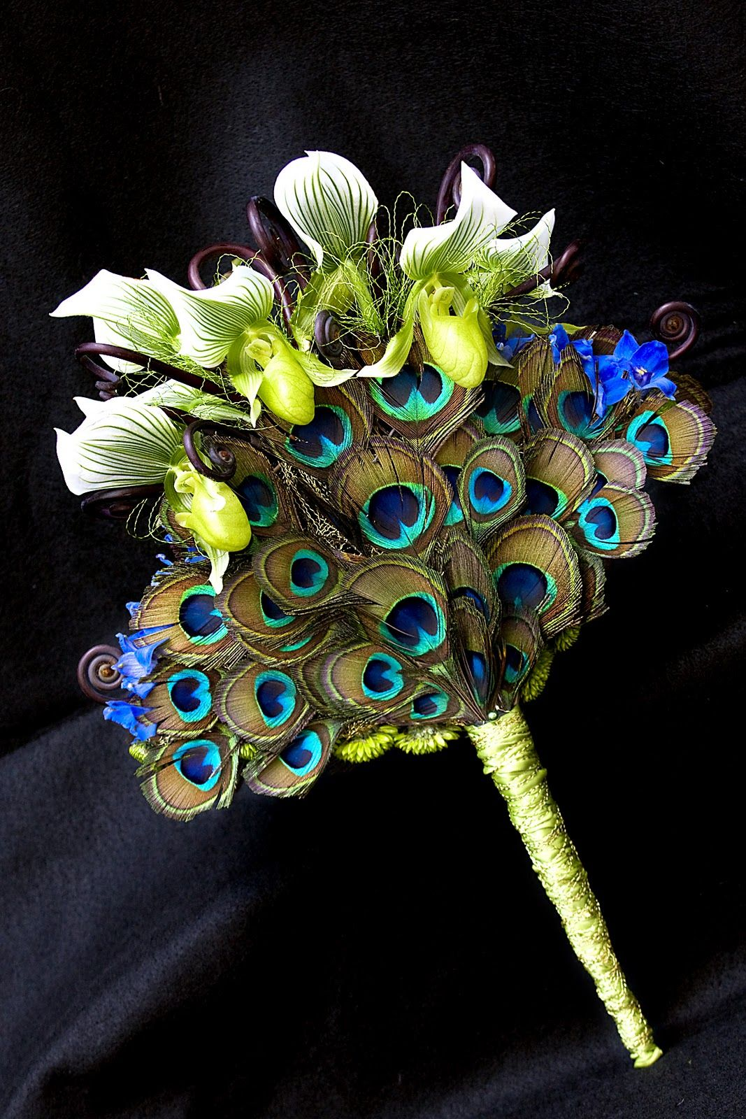 Peacock Wedding Theme Ideas Looking For Feather