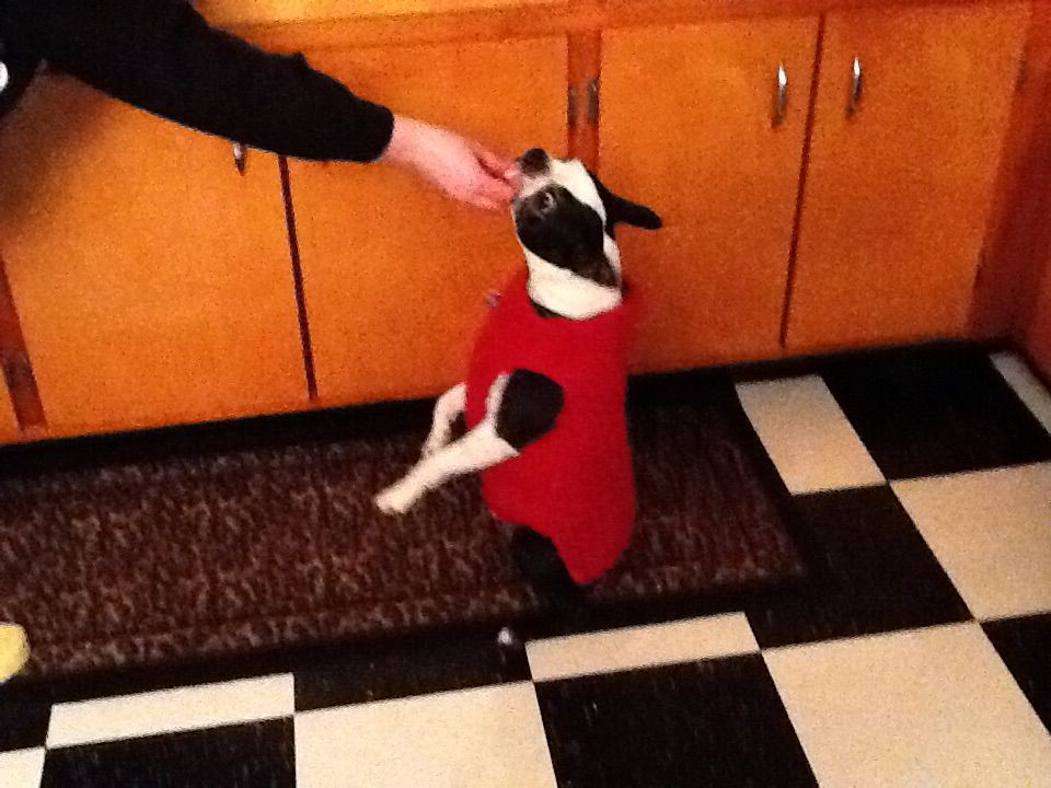 Udo's warm knitted sweater