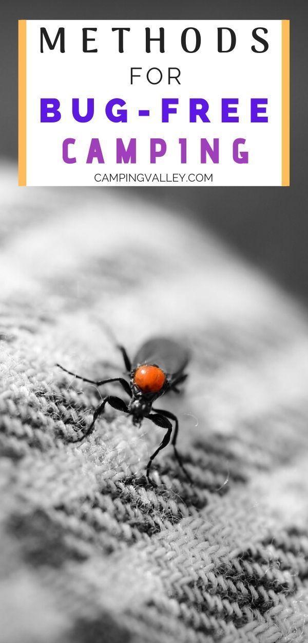 Camping Hacks Bugs in 2020 | Camping hacks, Tent camping ...