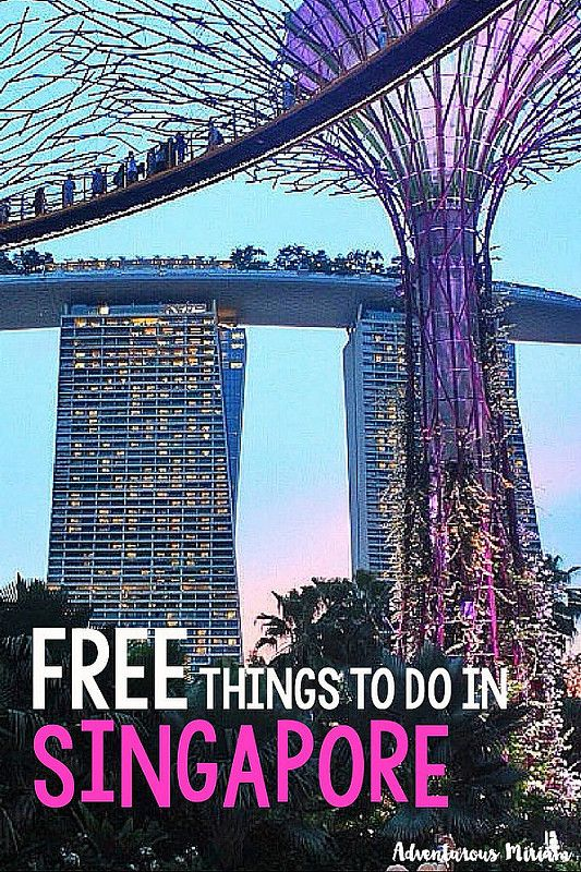 free things to do in singapore 2018