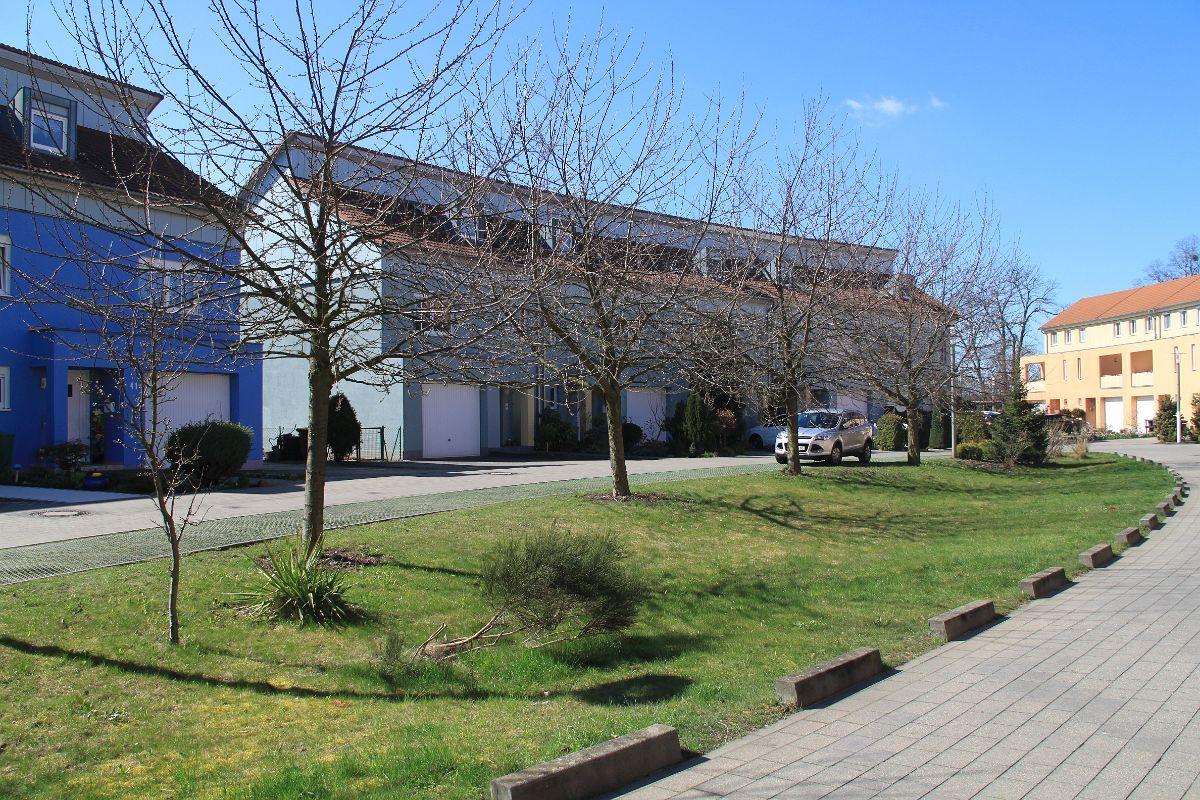 Sonniges Haus mit Kirschbaum in Frankfurt (Oder