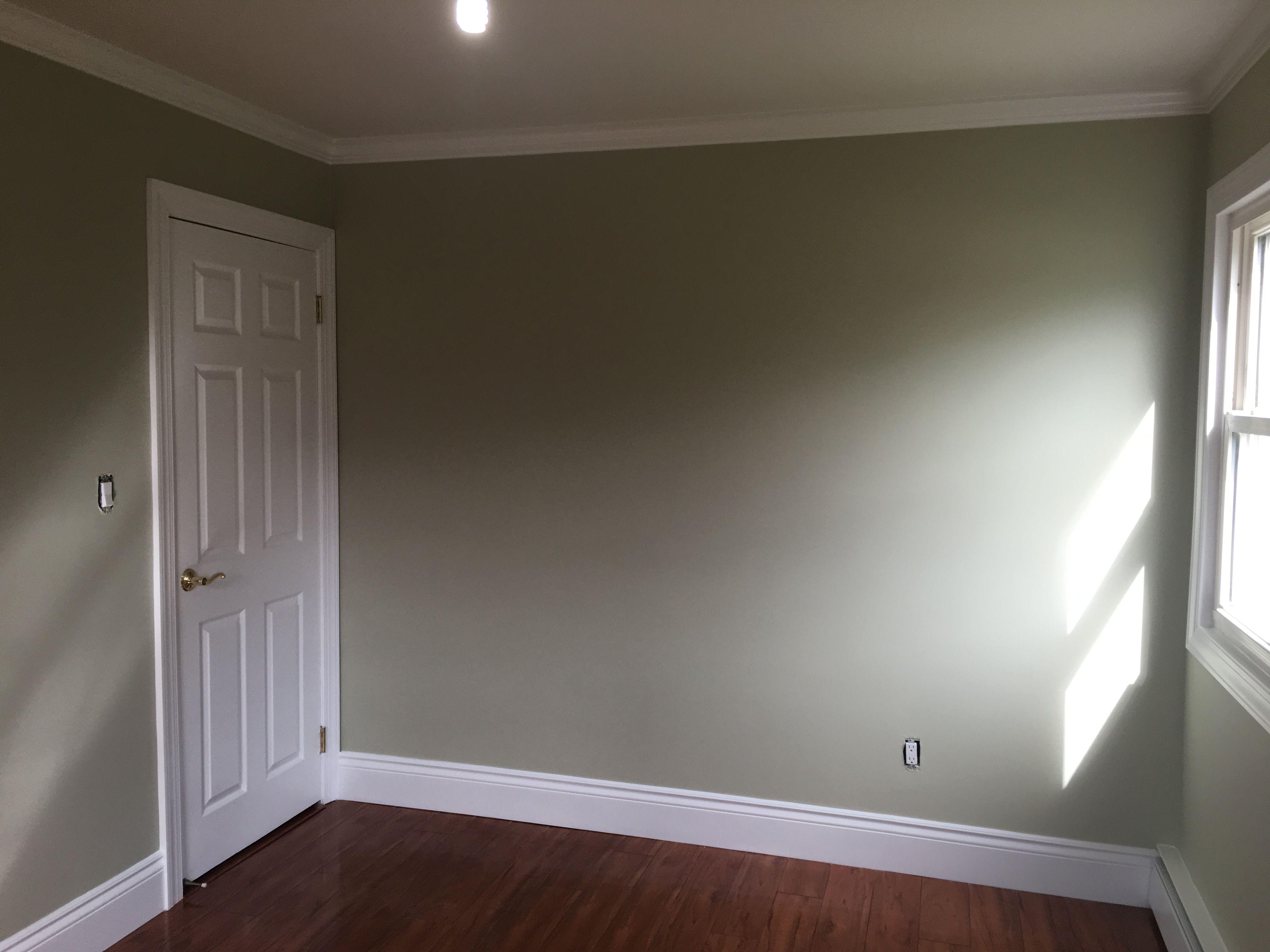 Paint Finish, Paint Sheen, Interior Paint, Interior ... |Matte Finish Paint