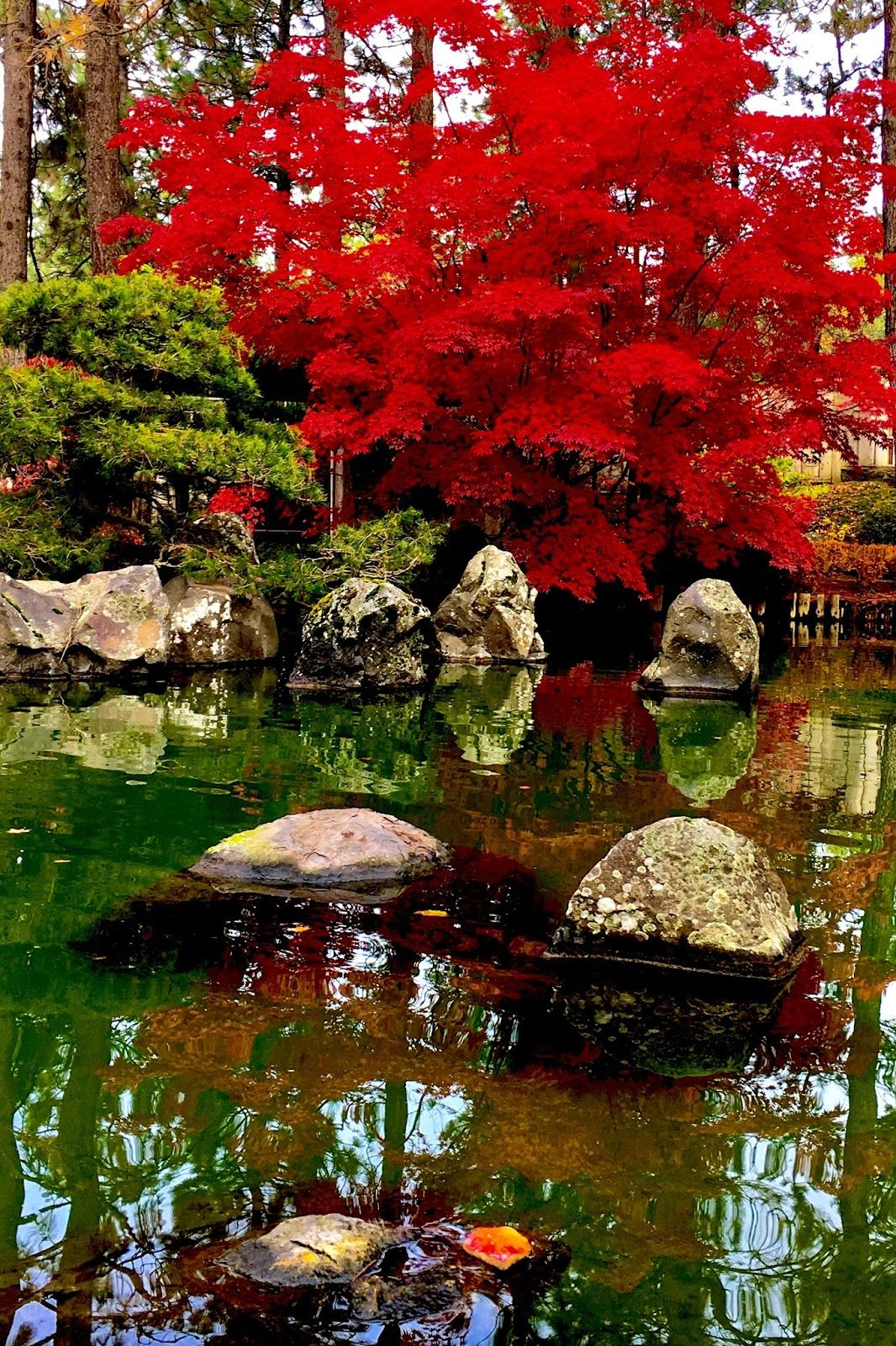 Japanese Stroll Garden Springfield: Travel Tips: Research And Discover Adventure In Your Own
