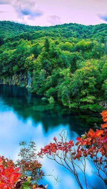 بوح الصور On Twitter Nature Wallpaper Forest Lake Autumn Forest