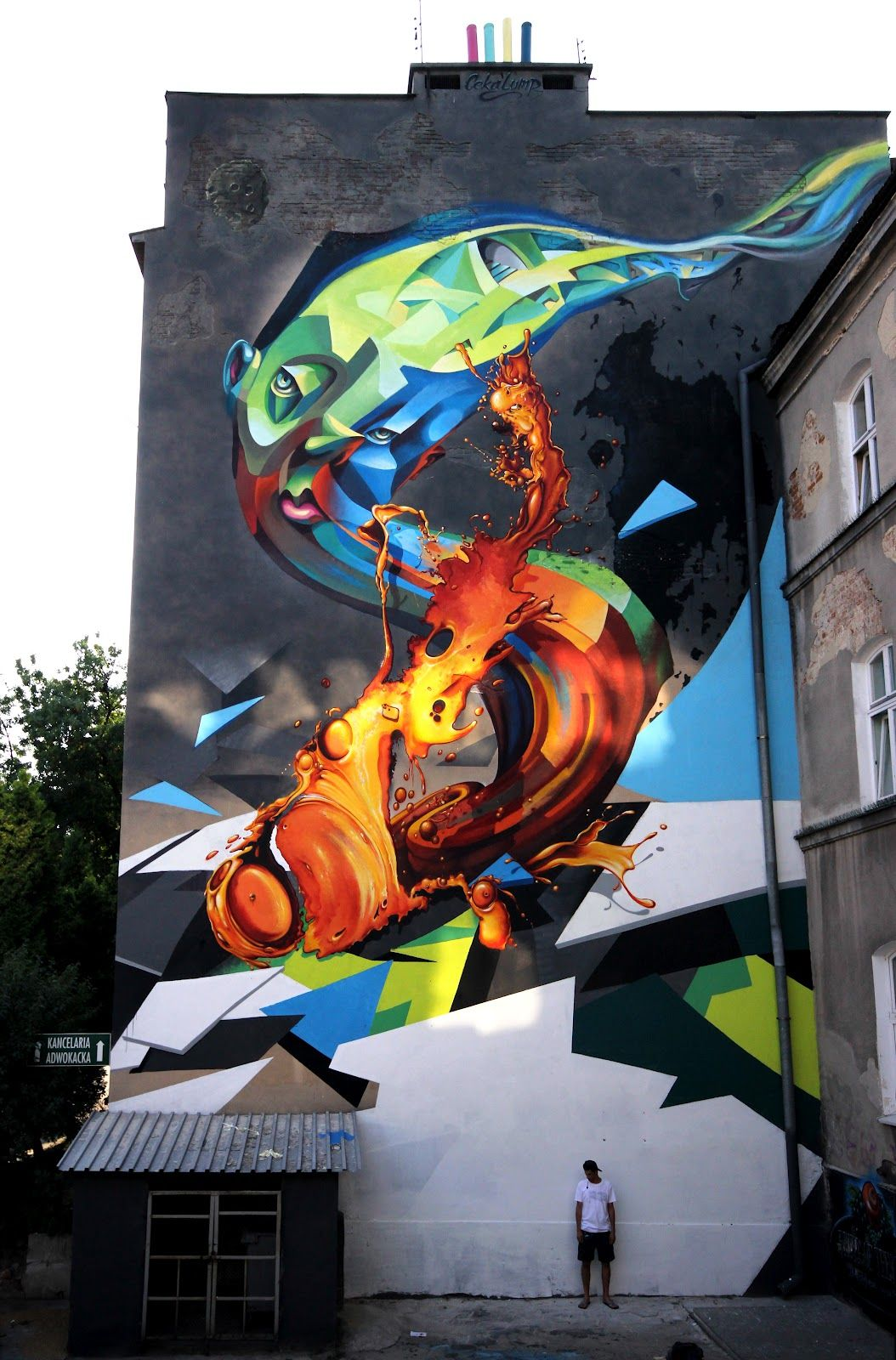By ceka100 in Lublin, Poland.... and i think that is beautiful and awesome i want that in the side of my house too... lol
