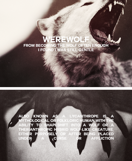 A WEREWOLF, also known as a lycanthrope, is a mythological or folkloric  human with