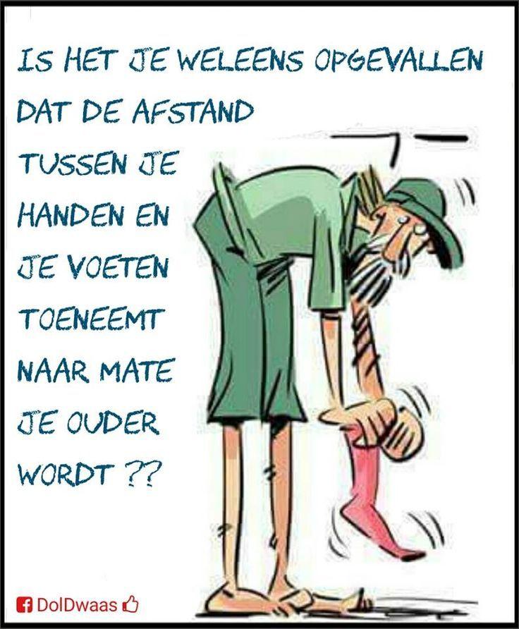 Citaten Nederlands Grappig : Afbeeldingsresultaat voor grappige citaten over ouder