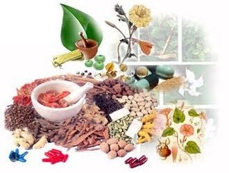 Natural Wellness Guide: Ayurveda Tips for Good Health and Healthy Life