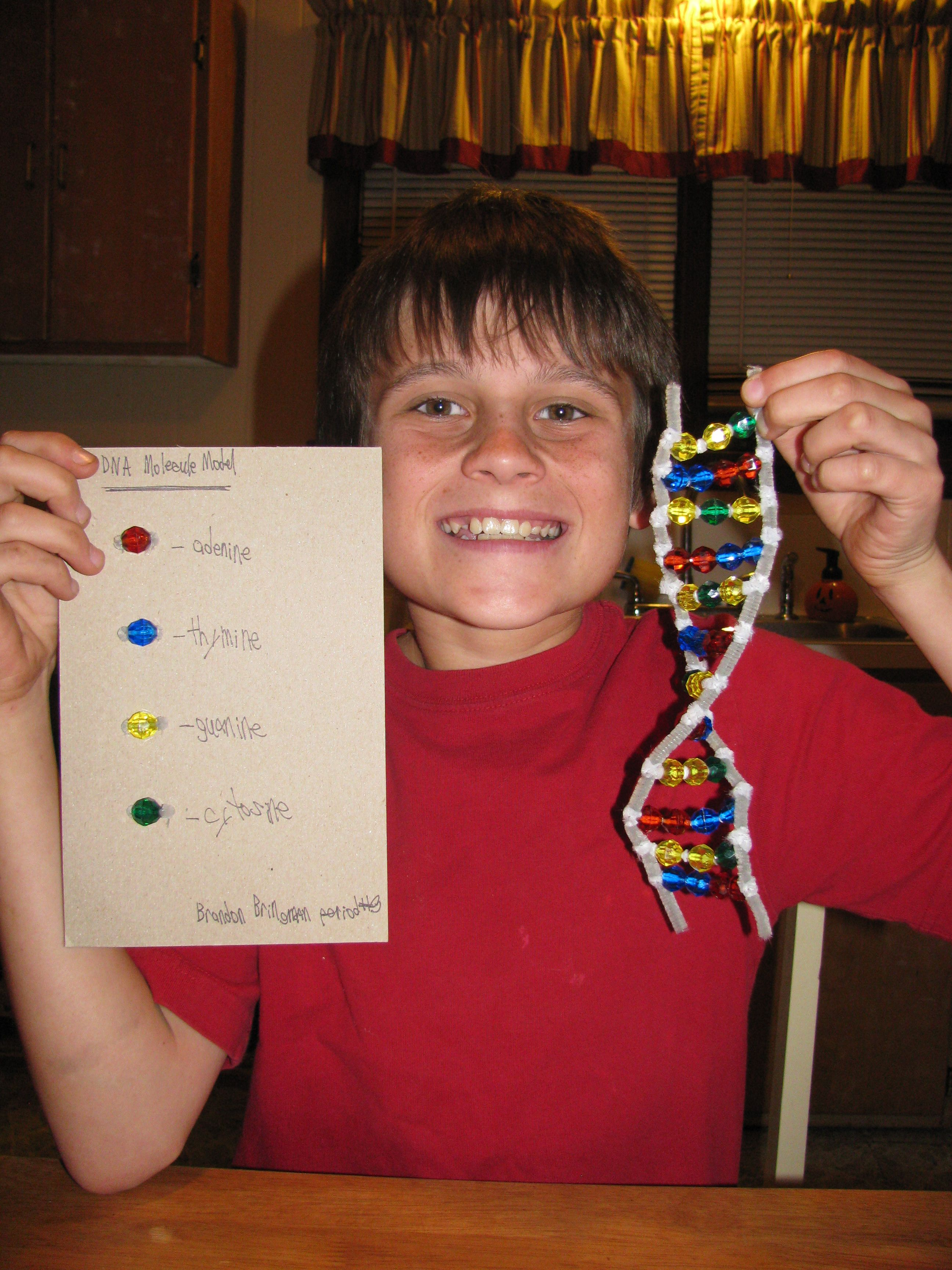 Dna Science Project