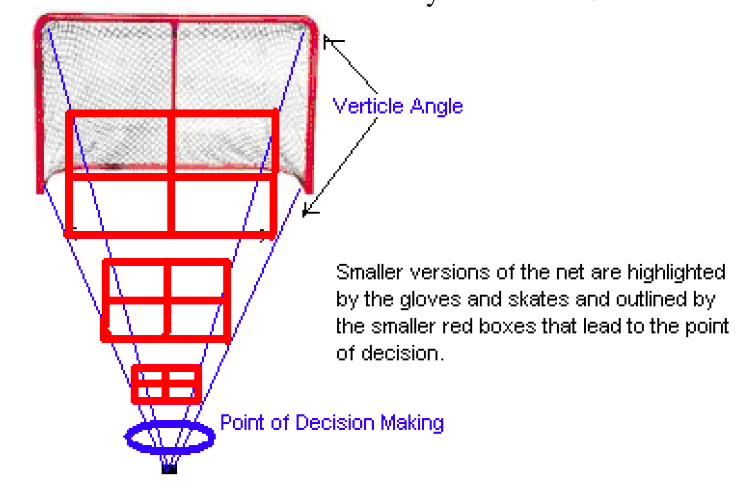 Professional Positioning Strategies Hockey Goalie Hockey Sport Hockey