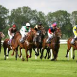 Pin by gene joiy on Blockbuster Bets Review Horse racing