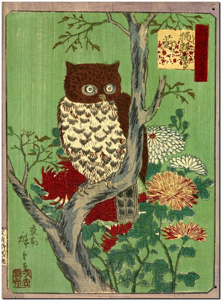 Japanese Woodblock Owl and Chysantheums Canvas Print Poster 18X12 ...