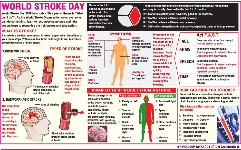 World Stroke Day World Stroke Day Preventive Care Coronary Artery Disease
