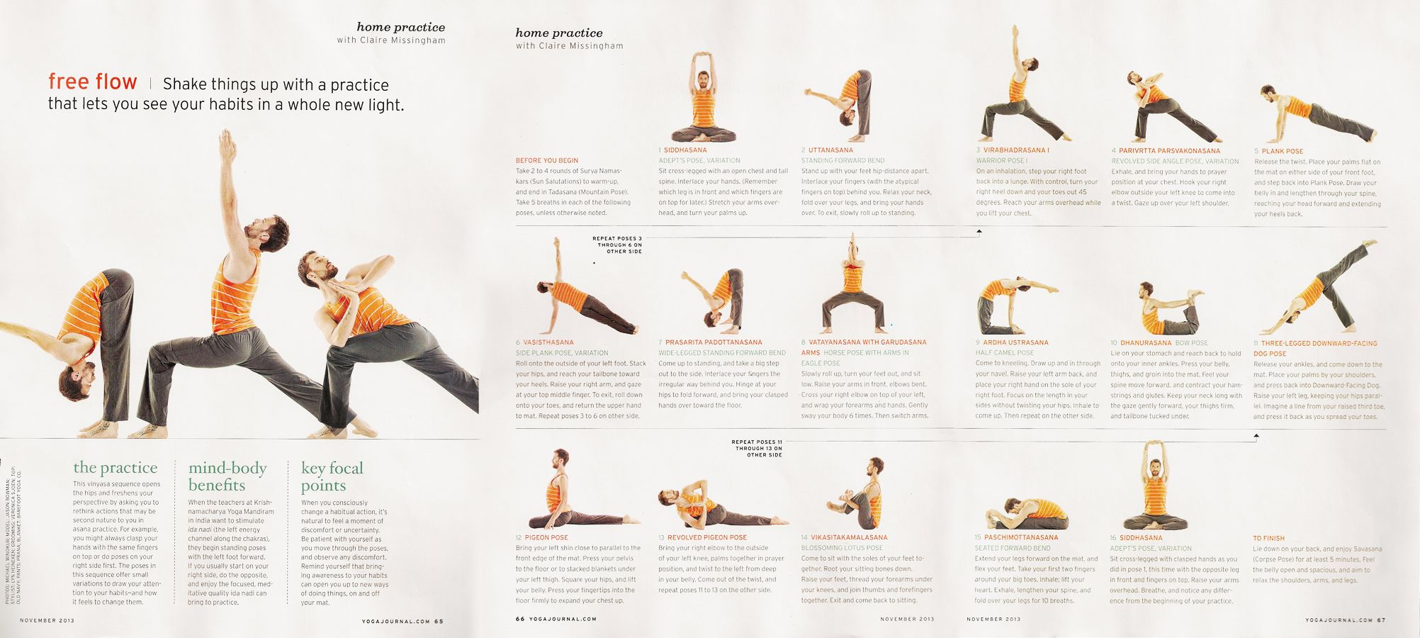 Shoulder Stand Yoga Journal