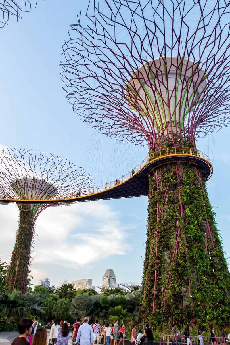 8 Fun Things to Do in Singapore with Kids + where to eat
